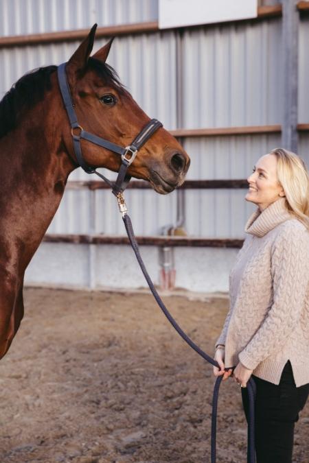 het paard als spiegel